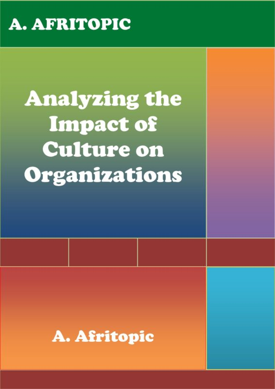 Analyzing the Impact of Culture on Organizations